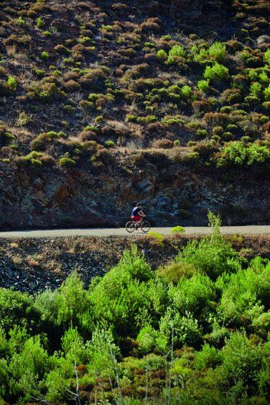 2-Dağ Bisikleti